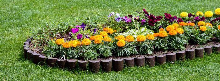 Клумба с цветами весенней высадки
